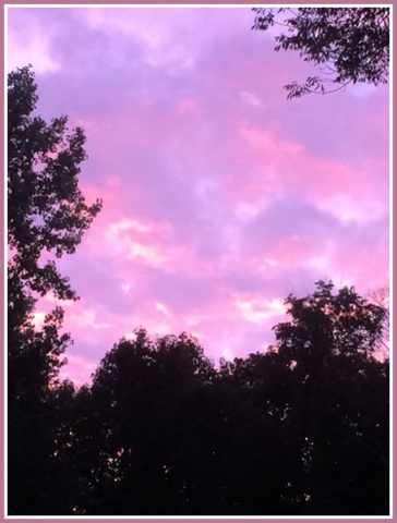 I snapped this beautiful sunset we were treated to from my deck when we dined outside one evening.