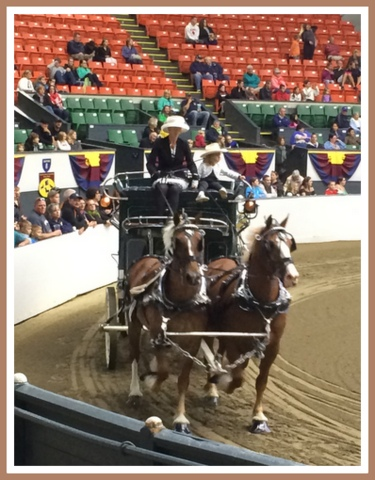 This mother/daughter team was my favorite and a blue ribbon winner!