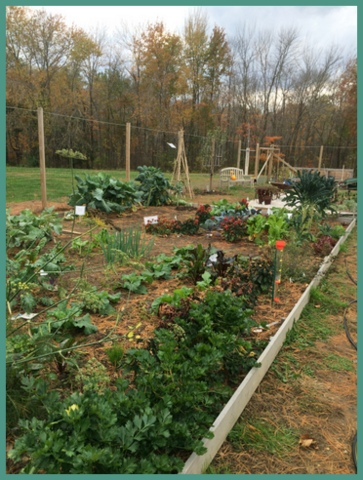 A garden at Fairfield County's Cooperative Extension