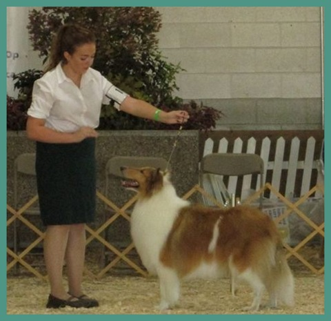 Emily Rogers and her pet in a competition.