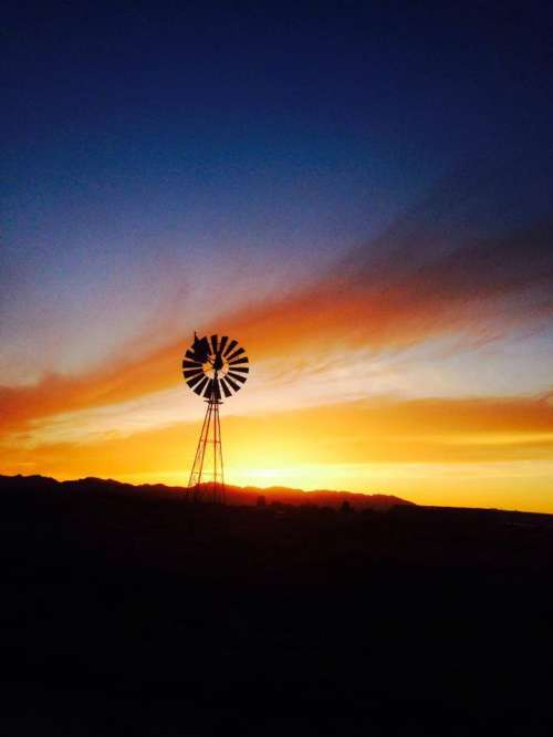 Windmill Jolyn 2