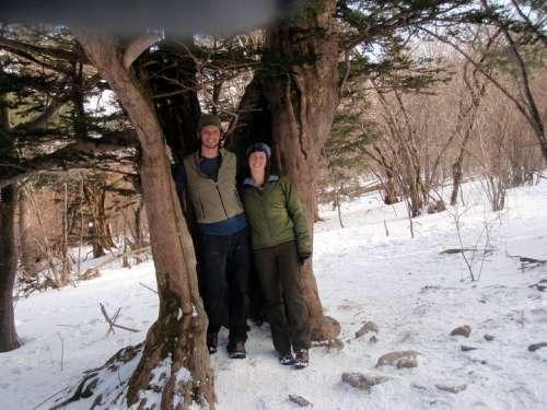 Love in a tree, South Korea; ca. 2010