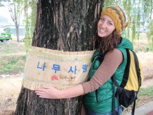 Tree Love, South Korea, ca. 2009