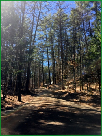 "I hear John Denver singing ""Country Road""..."