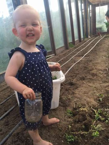 Ava doesn't seem to mind the sweltering heat even in the greenhouse!