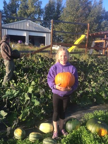 Pumpkin success!