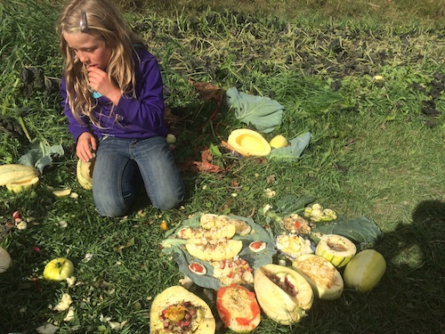 Leila creates some gourmet master pieces out of the spaghetti squash that didn't ripen enough before the big freeze.  The pigs will LOVE it.
