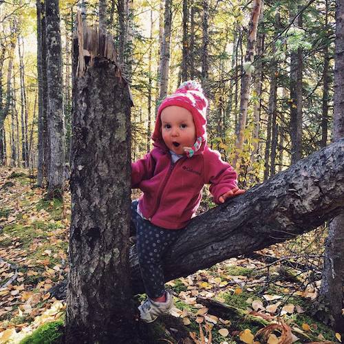 Navigating our wooded trail has made Ava quite the agile little hiker and tree climber!