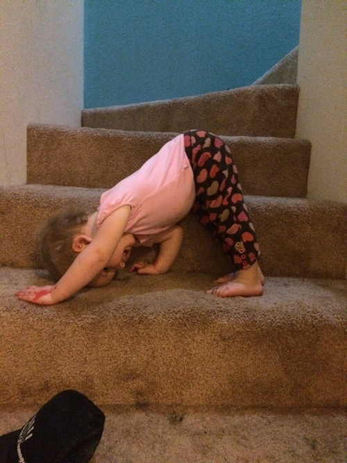 Ava the Yogi loves the carpeted stairs.