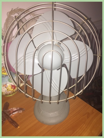 Circulating air benefits plants by drying moisture from leaves, making plants stronger and sturdier, and keeping some kinds of infestations from insects away. I picked up this cool vintage fan for my warm sunny room at a barn sale