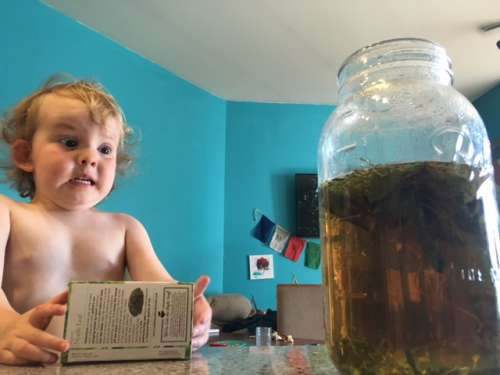 I think this photo of Ava is hilarious.  Watch that tea steep! It's almost ready to become lemonade!