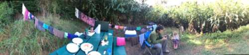 Farmgirls do what they gotta do.  This is our makeshift clothesline at our Koke'e campsite.