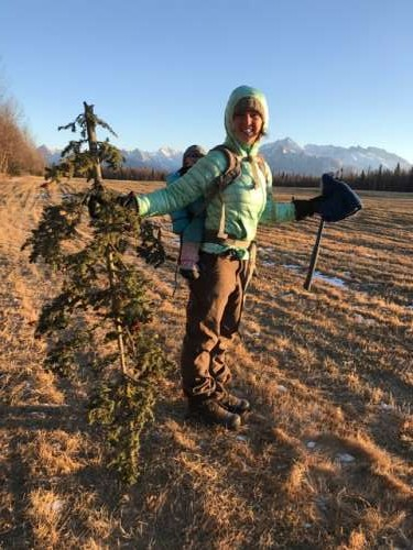 What can I say? I like bladed instruments.  This is our impressive tree.  It is the top of a spruce tree that had recently fallen over the hiking trail.  It is covered in spruce cones!  Our best tree yet.