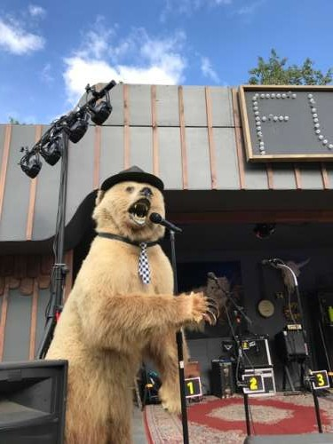 Unexpected bear sighting at local music festival.