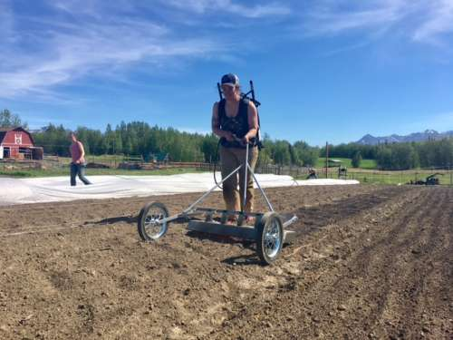 Anne-Corinne's new flame weeder at work! It is so cool (well...hot!).