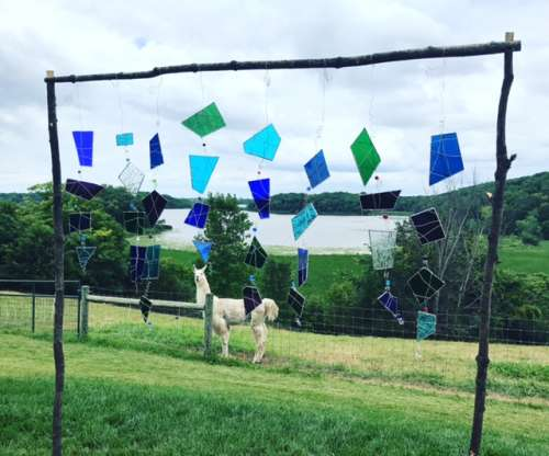 Ceremony backdrop, complete with llama.