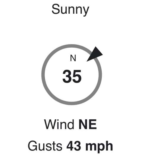 Screen shot of mid-day wind, six days into the wind storm.  At least it was sunny?