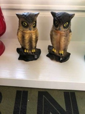 Owls were a popular camping theme back in the day.