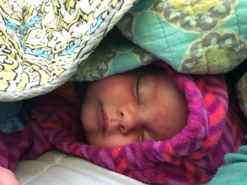 Speaking of hardy--this little Farmgirl went camping for the first time.  She slept like a baby!