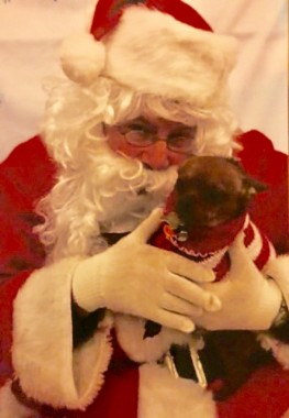 Santa and Pip-Squeak