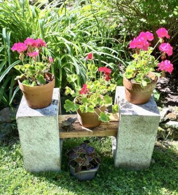 For a bit o'color I where there is a lot of green, I repurposed two old concrete cinder blocks and old wood to make this yard centerpiece.